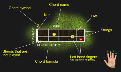 Labeled Diagram of guitar neck